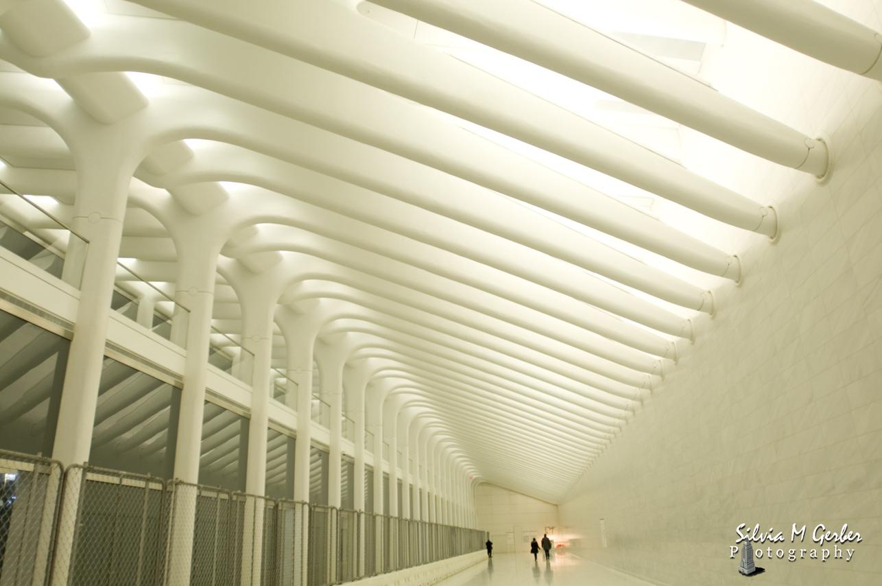 Projeto do Salvador Calatrava